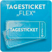 Tagesticket (Flex)
